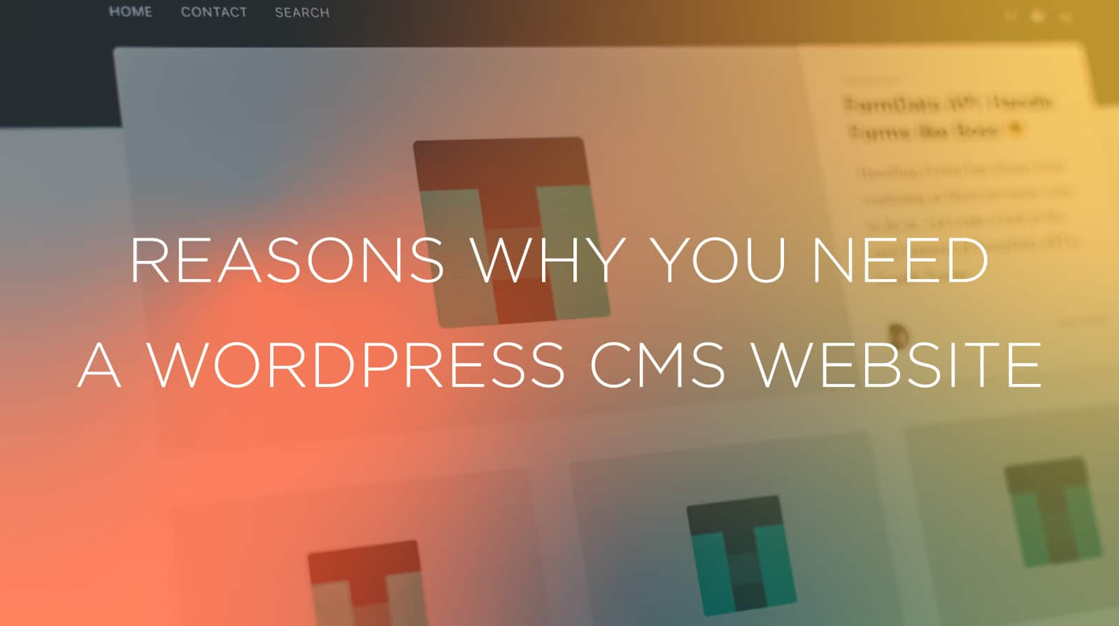 Reasons Why You Need a WordPress CMS Website
