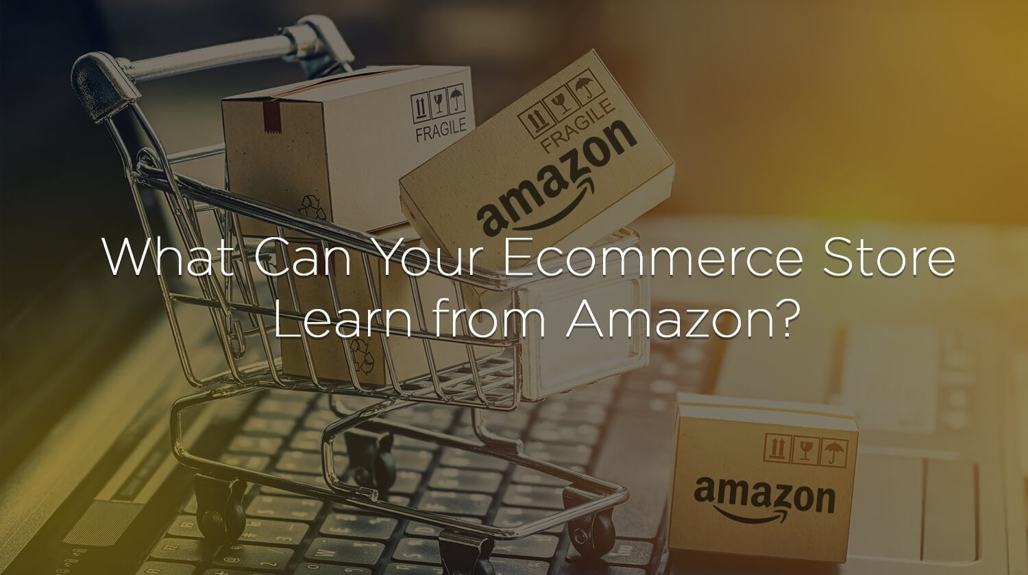 What Can Your Ecommerce Store Learn from Amazon